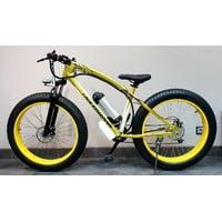 Электровелосипед Ekobike LoveFreedom 500W